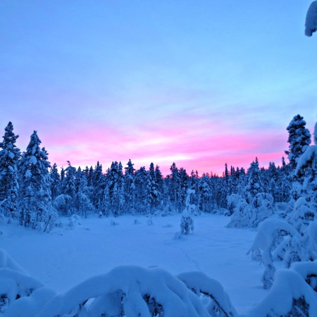 Twilight near Kiruna, Sweden. Photo by Wake and Wander.