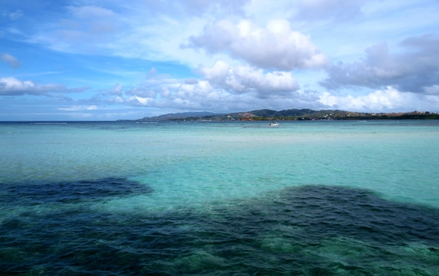 Scenery near Pigeon Point in Tobago. Photo by Wake and Wander.