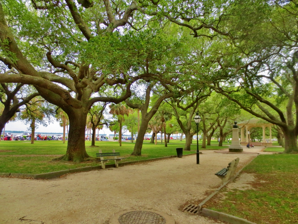 Live oak trees in Battery Park in Charleston, South Carolina. Photo By Wake and Wander.