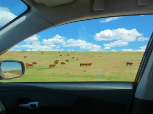 Scenery driving through Kansas on I-70. Photo by Wake and Wander.