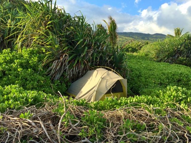 East side of Haleakala National Park, Maui. Photo by Wake and Wander.